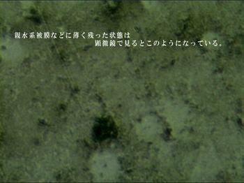 depo-kenbi2.jpg